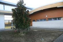 Agence Séquence Architecture à Toulouse (31) / Gymnase du Collège de Saint Jorry (31) - Brique Béton As100 à Montage à Sec Acoustique
